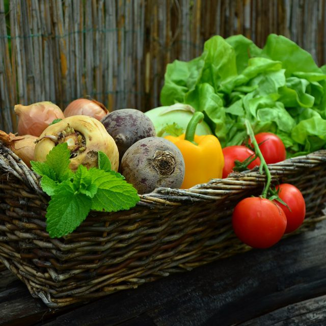 Fresh Fruits and Vegetables Suppliers in Tanzania